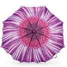 Austin House Telescopic purple umbrella
