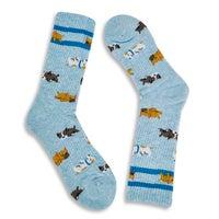 Women's Sleeping Dogs Sport Sock - Mint Printed